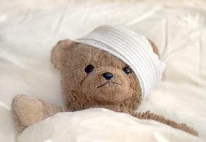 teddy bear head wrapped