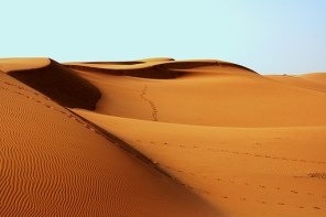 desert-lonliness