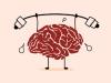 Little Proof that Supplements Improve BrainHealth